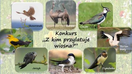 """Konkurs plastyczny pt. """"Z kim przylatuje wiosna?"""""""